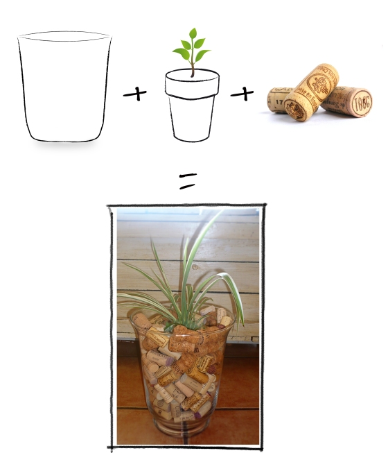 plant cork